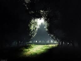 darkness into light
